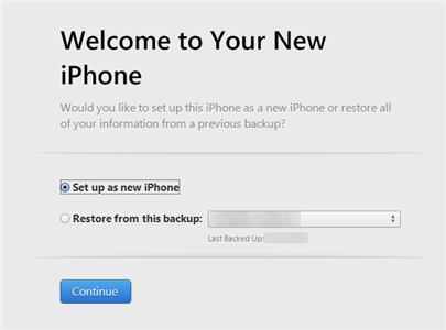 Set Up a New iPhone Using iTunes