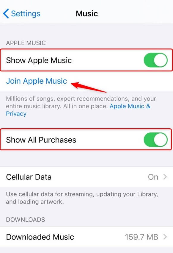 Check Apple Music Setting on iPhone
