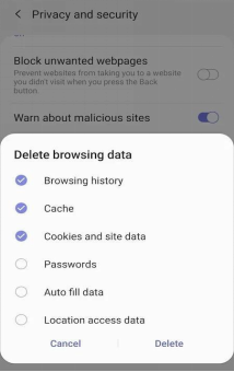 Choose to Delete Browsing History Cache and Cookies