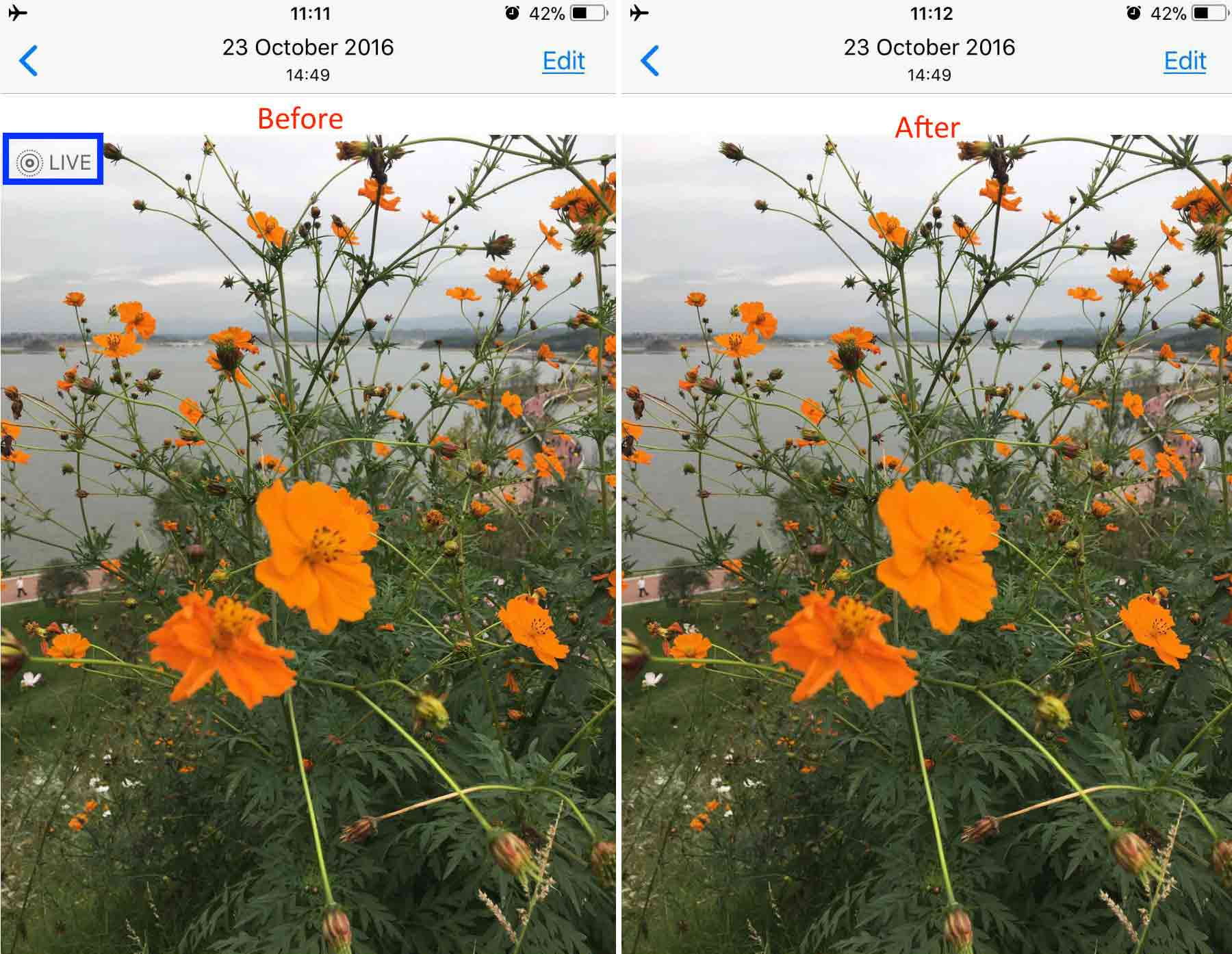 Convert Live Photo to Still by Photo Editing - Step 3
