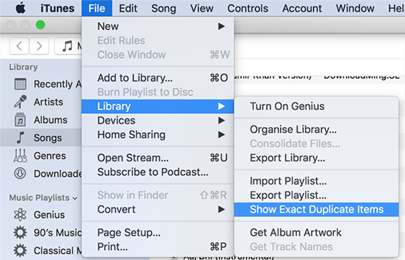 View exact duplicate items in iTunes for Mac