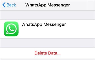 Delete the iCloud WhatsApp Backup