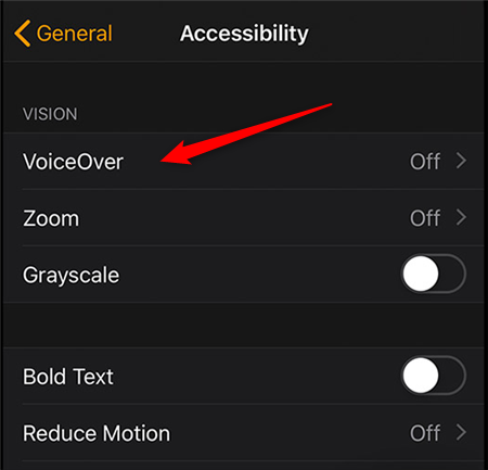 Disable VoiceOver on an Apple Watch