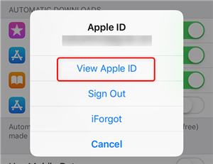 View your Apple ID in iOS