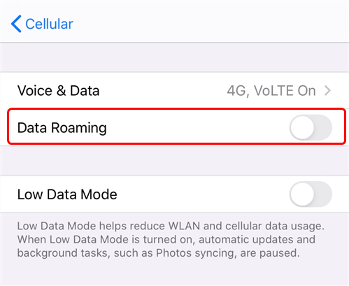 Enable the Data Roaming Option