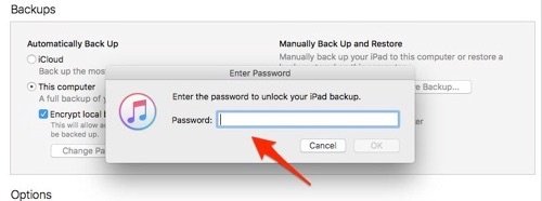 How to Encrypt iPhone Backup in iTunes