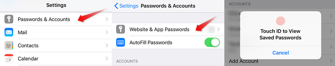 Find All Saved Passwords on iPhone Safari
