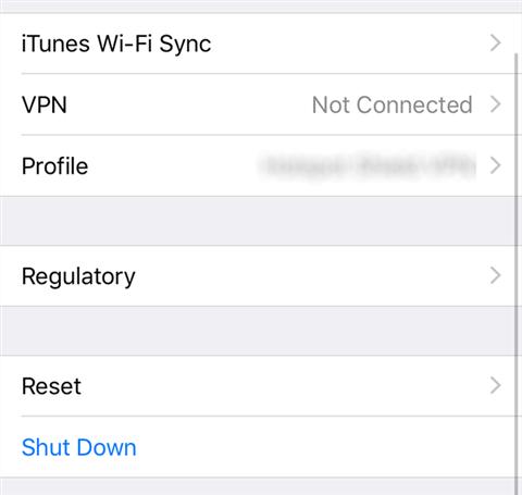 View the iPhone reset menu