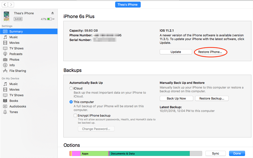 Restoring Device to Factory Settings via iTunes