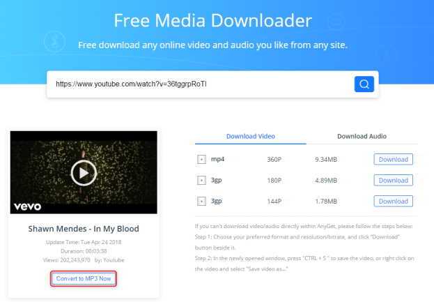 Free Download Shawn Mendes In My Blood MP3 – AnyGet