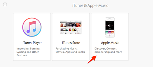 How to Contact Apple about Your Apple Music Problems – Step 3
