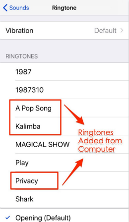 Set Ringtones on iPhone 8/X