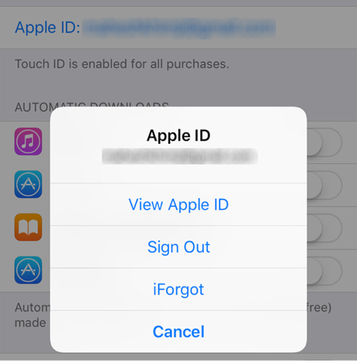 View Apple Account Settings on iPhone