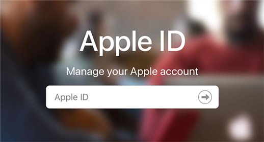 Sign-in to your Apple ID on the Apple website