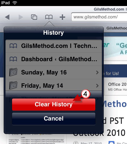 How to Clear History on iPad Air/Mini