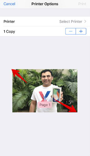 How to Convert a Photo to PDF on iPhone/iPad for Free - Step 3