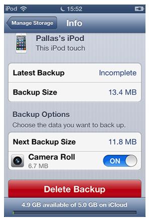 Delete iCloud Backups on iOS Device