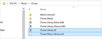 How to Delete iTunes Libray on Windows