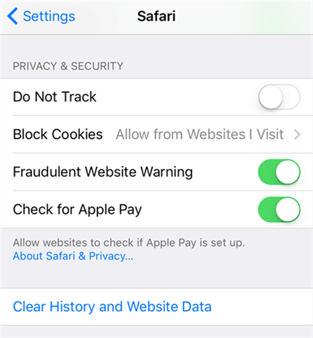 Clear Safari Cache on iPhone