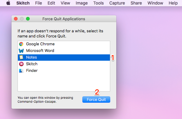 Force Quit in Apple Icon – Step 2