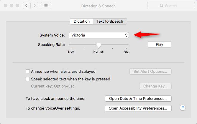 How to Make Siri Say What You Type on Mac - Step 2