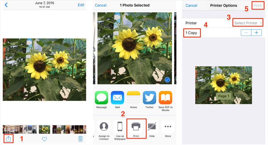 How to Print Photos from iPhone via AirPrint