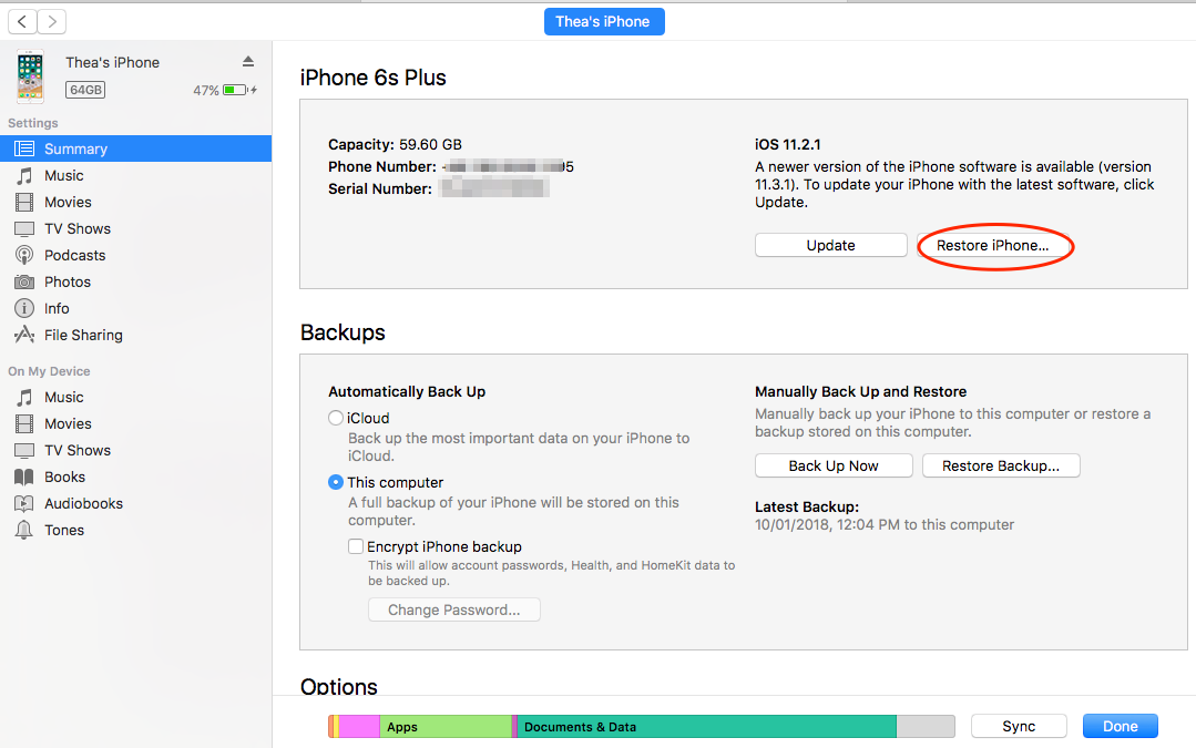 How to Restore Disabled iPhone by Using iTunes