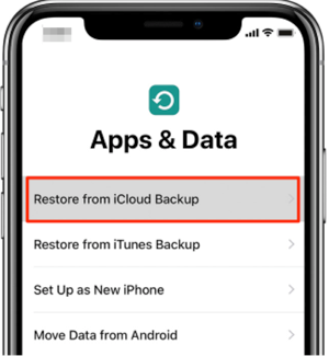 How to Restore iPhone XS (Max) from iCloud Backup