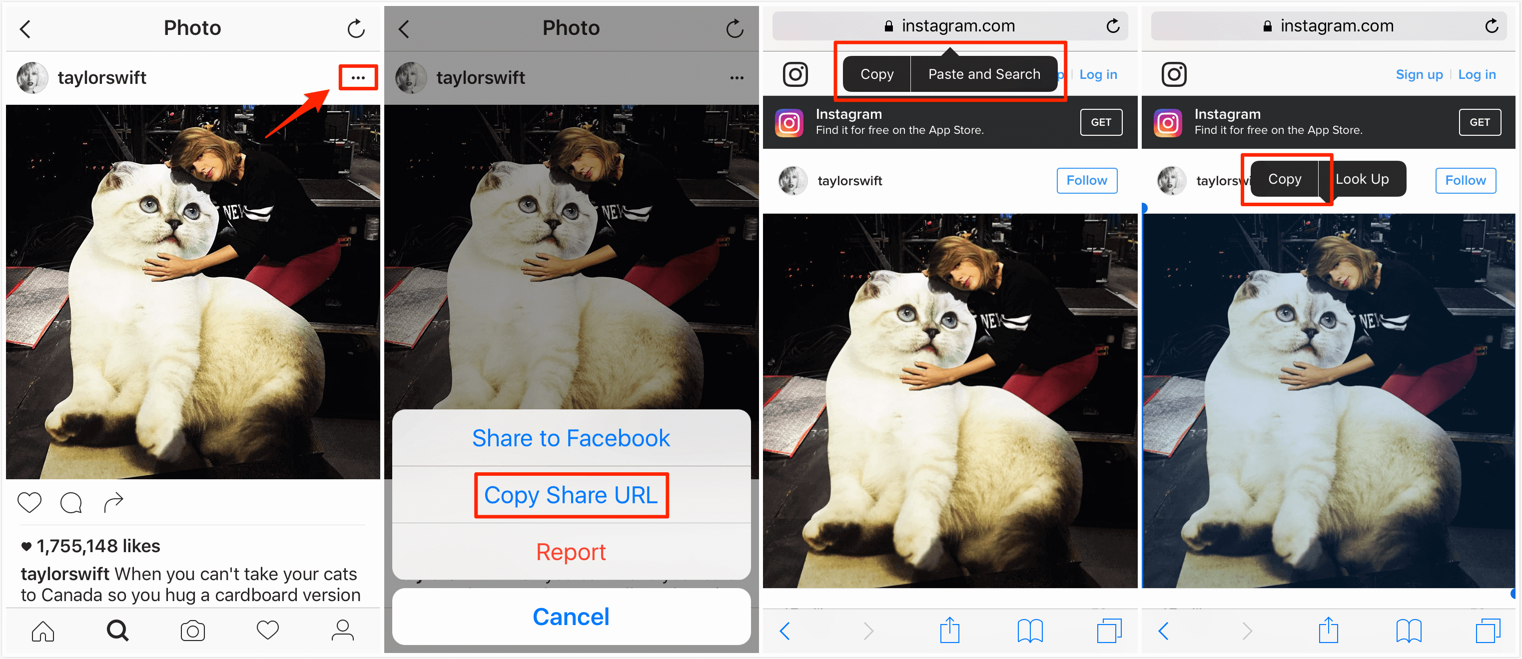 How to Save Instagram Photos on iPhone/iPad – Step 2