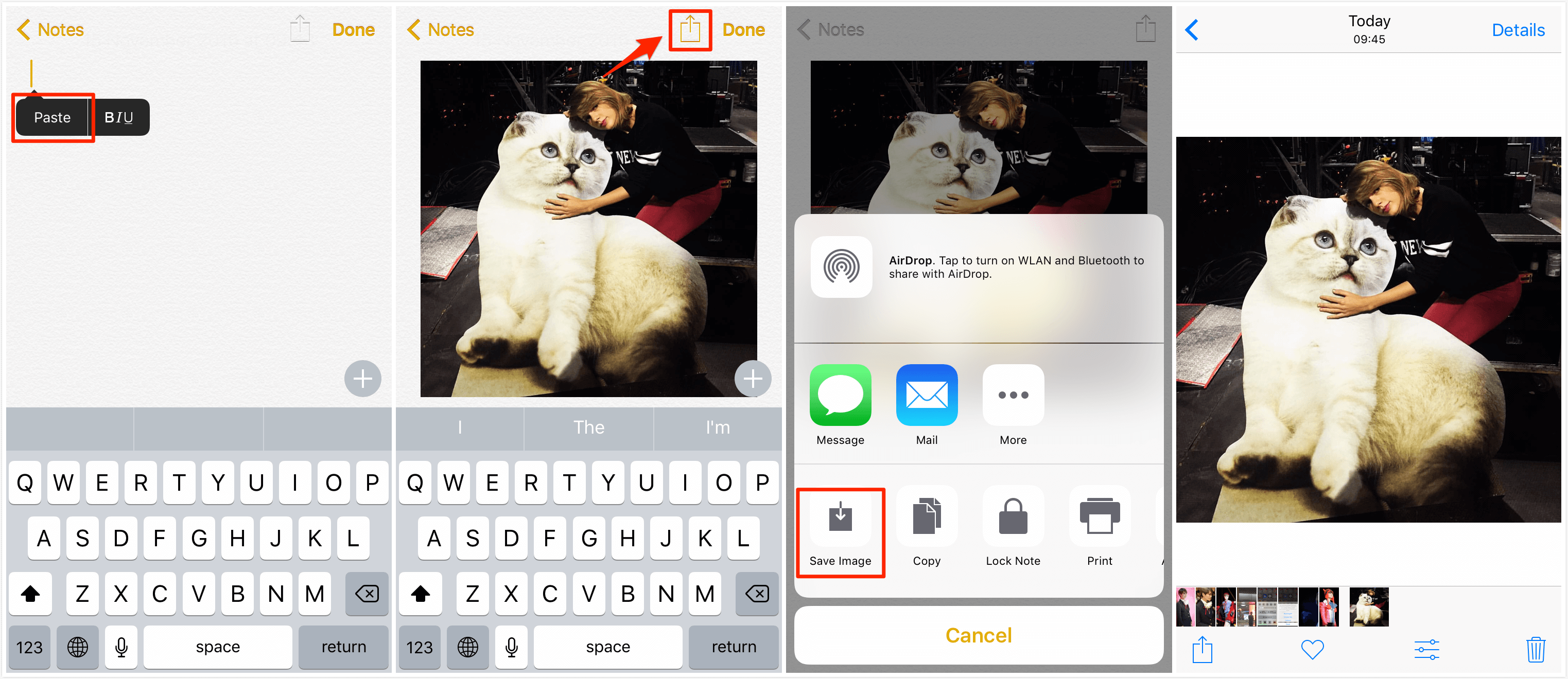 How to Save Instagram Photos on iPhone/iPad – Step 3