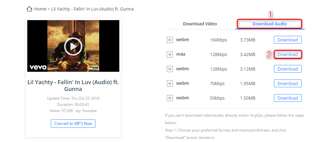 How to Save MP3 from YouTube via AnyGet - Step 3