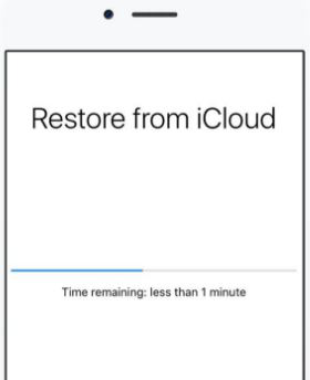 Backup getting restored from iCloud