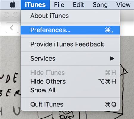 Access the iTunes Settings Menu