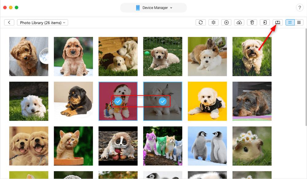 How to Copy Photos from iPad to MacBook/Mac mini/iMac - Step 3