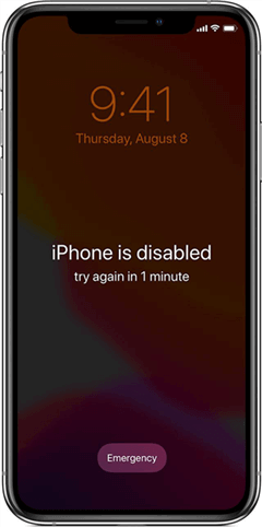 How to Undisable Your iPhone 11/Xs/Xr/X/8/7/6s