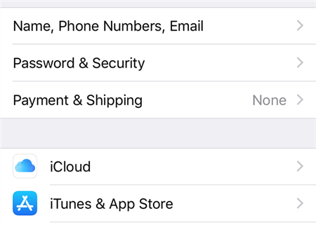 Access iCloud Password Section On The iPhone