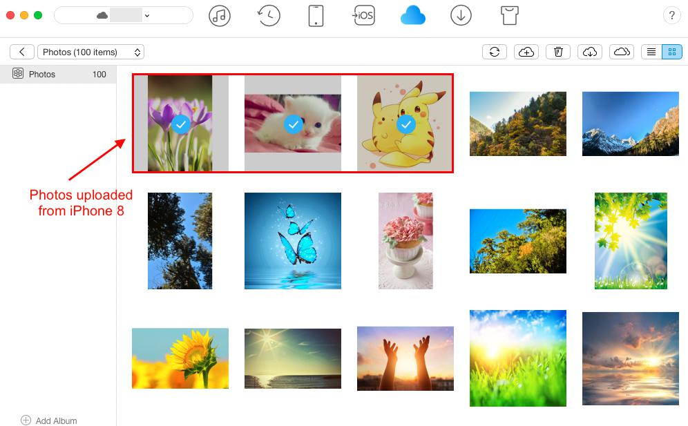 Check Uploaded Photos in iCloud with AnyTrans