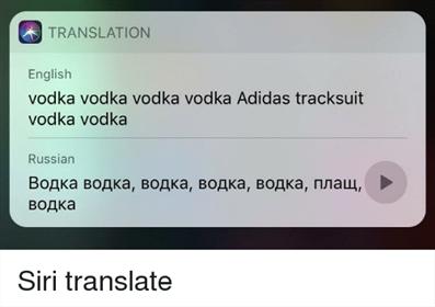 Use Siri to Translate