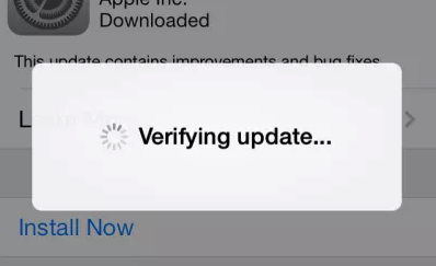 iOS 12 Unable to Verify Update