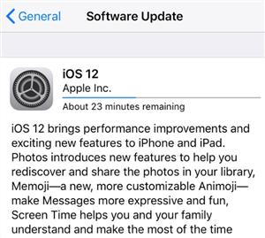 Installing iOS 12/12.1 Update