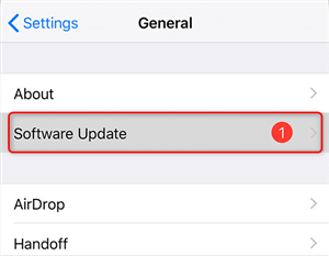 Update iOS to the Latest Version