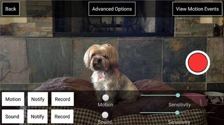 iCam Webcam Video Streaming