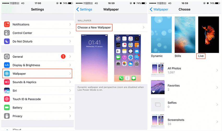 How To Fix Iphone 11 Xs X 8 7 6s Live Wallpaper Not Working