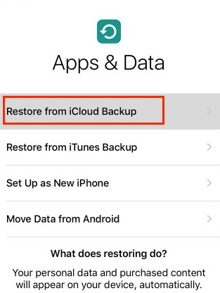 iOS 12 Data Recovery - Recover from iCloud - Step 2
