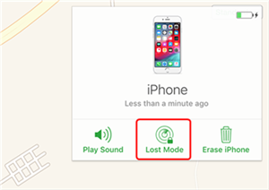 Enable Lost Mode for your Device