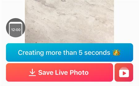 Save Live Photo