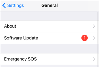 Navigate to the Software Update option on iPhone
