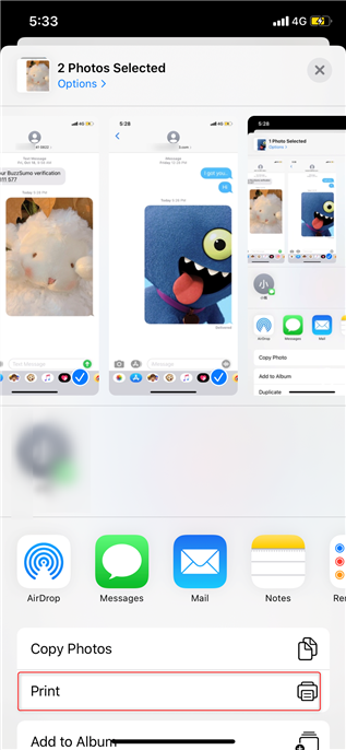 Print iPhone Text Messages with Screenshot