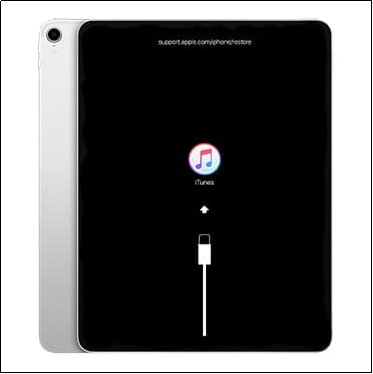 Put Your iPad in Recovery Mode