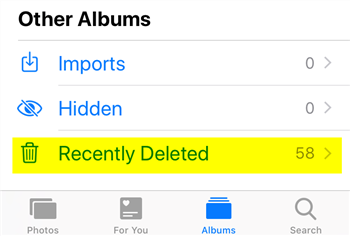 Recover Photos from Recently Deleted Folder on iPhone